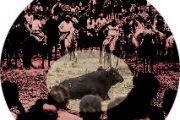 """La cultura y """"El toro de la Vega"""""""